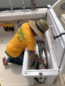 Coho Salmon caught on Lake Michigan - Lake Michigan Fishing Report