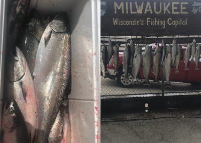 Lake Michigan Fishing Report – June 18, 2018